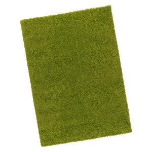 Location Tapis vert